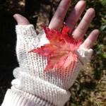 Правила ухода за телом осенью