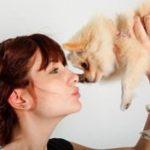 Аллергия на собак и как с ней справиться